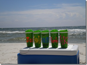 dani beach 033